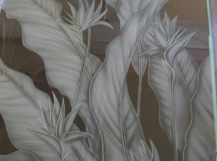 極楽鳥花のサムネイル