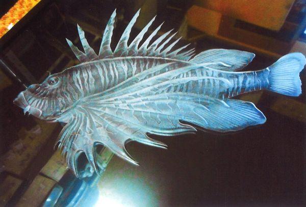 魚 エッチングガラス(建築・店舗エッチングアートガラス)