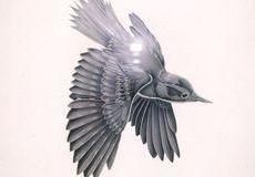 小鳥のエッチングガラス